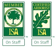 ISA Arborist on staff
